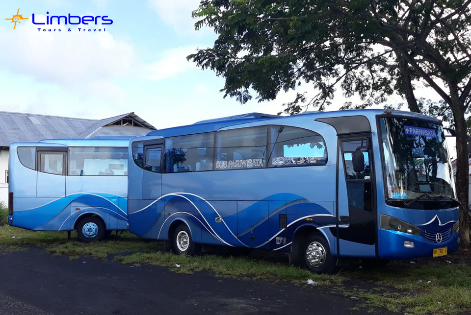 Bus 29seats