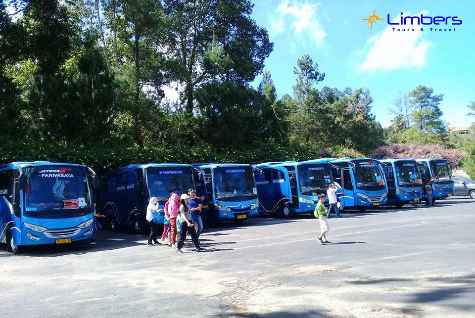 Barisan Armada Biru Bus Limbers